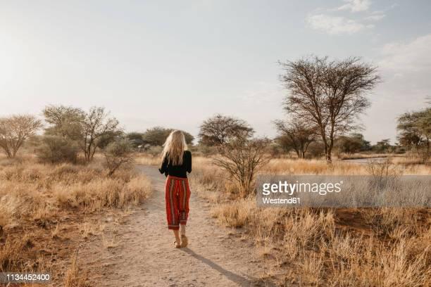africa, namibia, blonde woman walking on way in grassland - safari stockfoto's en -beelden