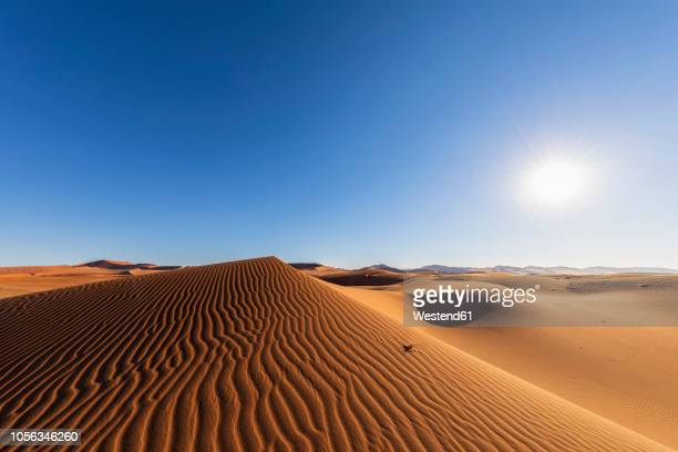 africa, namibia, namib desert, naukluft national park, sand dunes against the sun - namib naukluft national park stock pictures, royalty-free photos & images