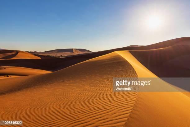 africa, namibia, namib desert, naukluft national park, sand dunes against the sun - ナミブ砂漠 ストックフォトと画像