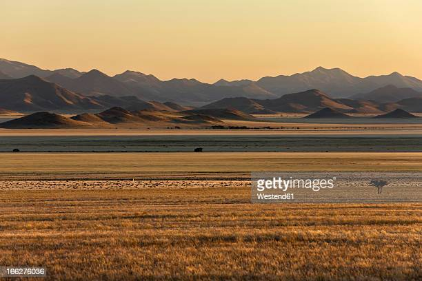 Africa, Namibia, Sunrise at Tiras Mountains, Namib Desert