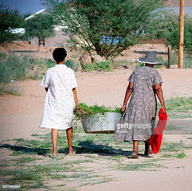 Africa, South Africa, Kalahari Desert Area, View Of Two Women Carrying Metal Bathtub Filled With Plants (Year 2009)
