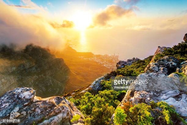africa, south africa, western cape, cape town, table mountain - south africa stock pictures, royalty-free photos & images
