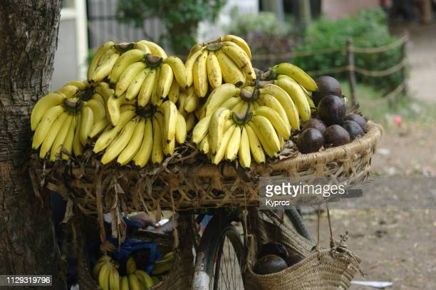 Africa, Tanzania, Dar Es Salaam, 2009: View Of Bicycle Loaded With Bananas