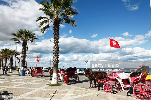 africa, tunisia, gulf of hammamet, sousse, avenue hedi chaker, horse carriages on beachfront promenade - drapeau tunisien photos et images de collection