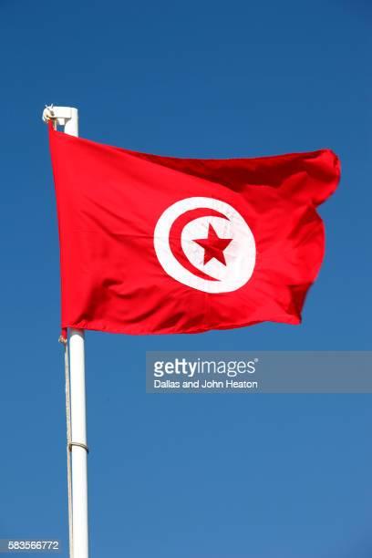 africa, tunisia, national flag - drapeau tunisien photos et images de collection