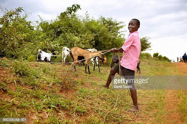 Africa, Uganda, boy (11-13) with goats tied to ropes, portrait