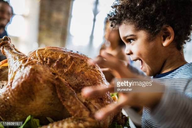 african american boy about to bite stuffed turkey on thanksgiving day. - roast dinner stock pictures, royalty-free photos & images