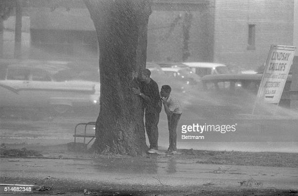 African American boys participating in a segregation protest in Birmingham Alabama hide behind the trunk of a tree after firefighters begin spraying...