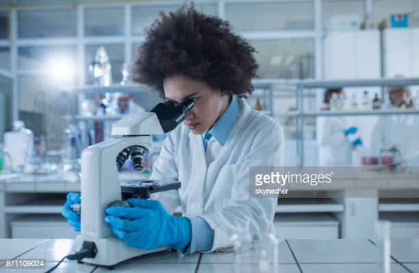 African American female doctor looking through a microscope while working on scientific research in laboratory.