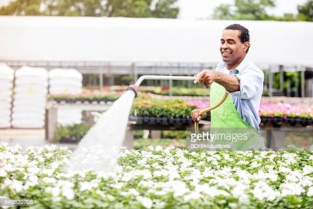 African American garden center employee waters flowers outdoors