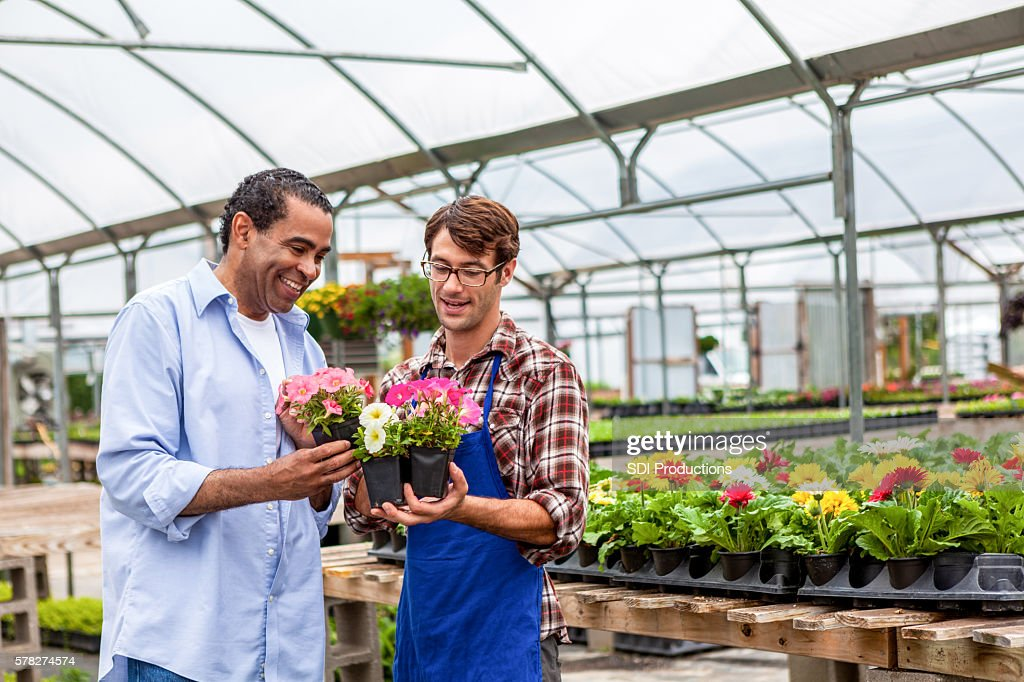 African American Man S At Local Plant Nursery Stock Photo