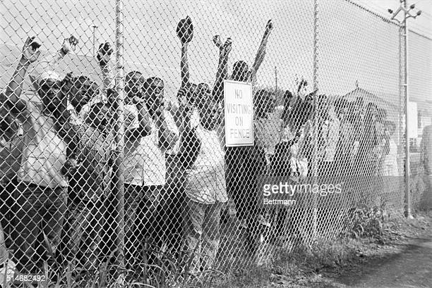 African American protesters arrested during segregation demonstrations are held in a fenced yard in Birmingham Alabama