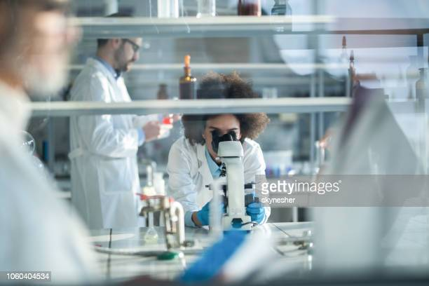 African American scientist looking through microscope while working in laboratory with her colleagues.