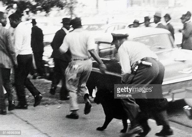African American segregation protesters flee from a police officer and police dog during a prayer march in Birmingham Alabama