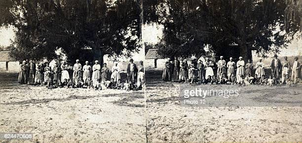 African American slave families owned by Mrs Barnwell A group portrait of African American adults and children posed under a large tree Between 1860...