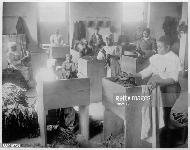 African Americans mostly women sorting tobacco at the TC Williams Co tobacco Richmond Virginia New Orleans Images collected by WEB Du Bois and Thomas...