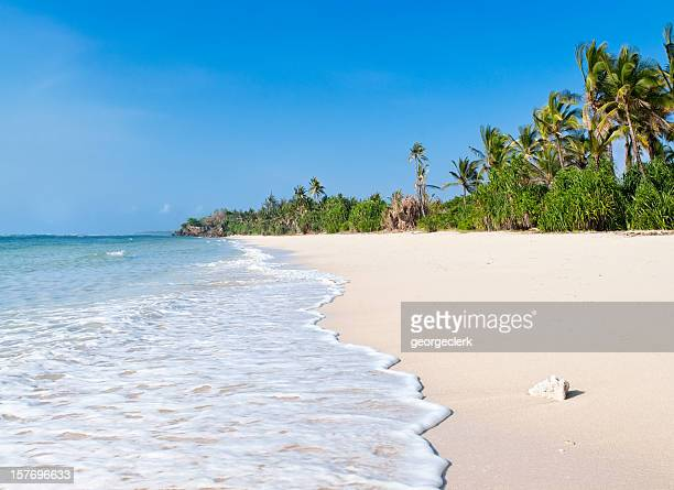 african beach - kenya stock pictures, royalty-free photos & images