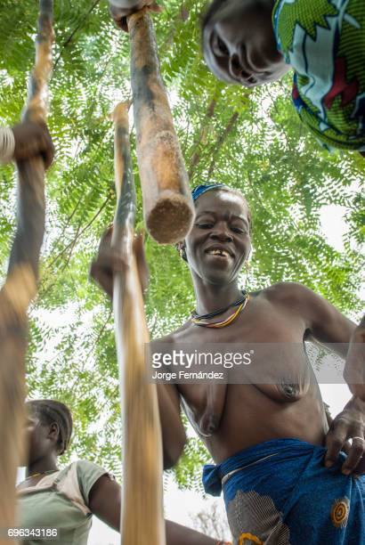 African bedik women pounding peanuts with big sticks