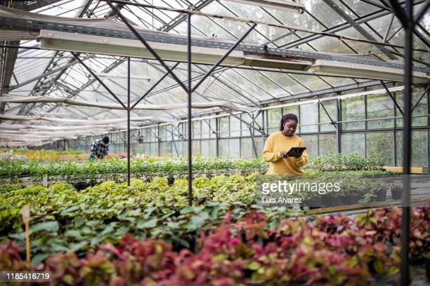 african female garden worker using digital tablet at greenhouse - technician stock pictures, royalty-free photos & images