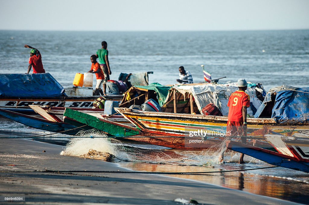 African fishing boats. The Gambia. : Stock Photo