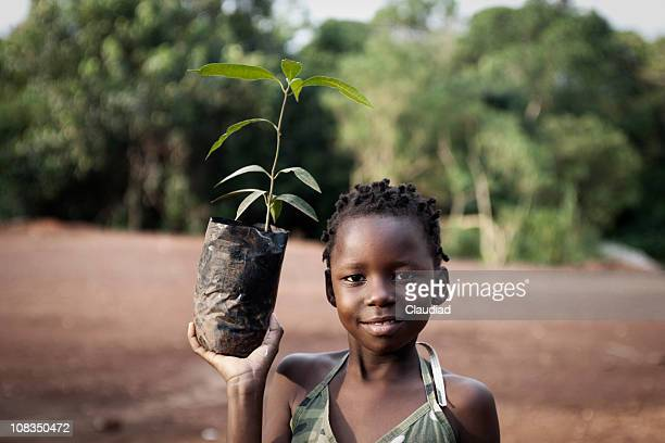 african girl planting mango tree - planting stock pictures, royalty-free photos & images