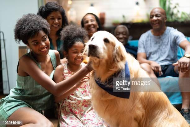 família de latino-americano africana junto em casa e seu cão - família de várias gerações - animal doméstico - fotografias e filmes do acervo
