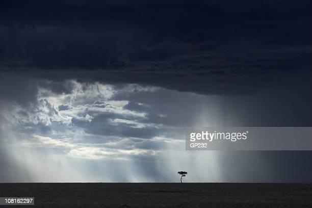 Paysage africain avec des nuages d'orage