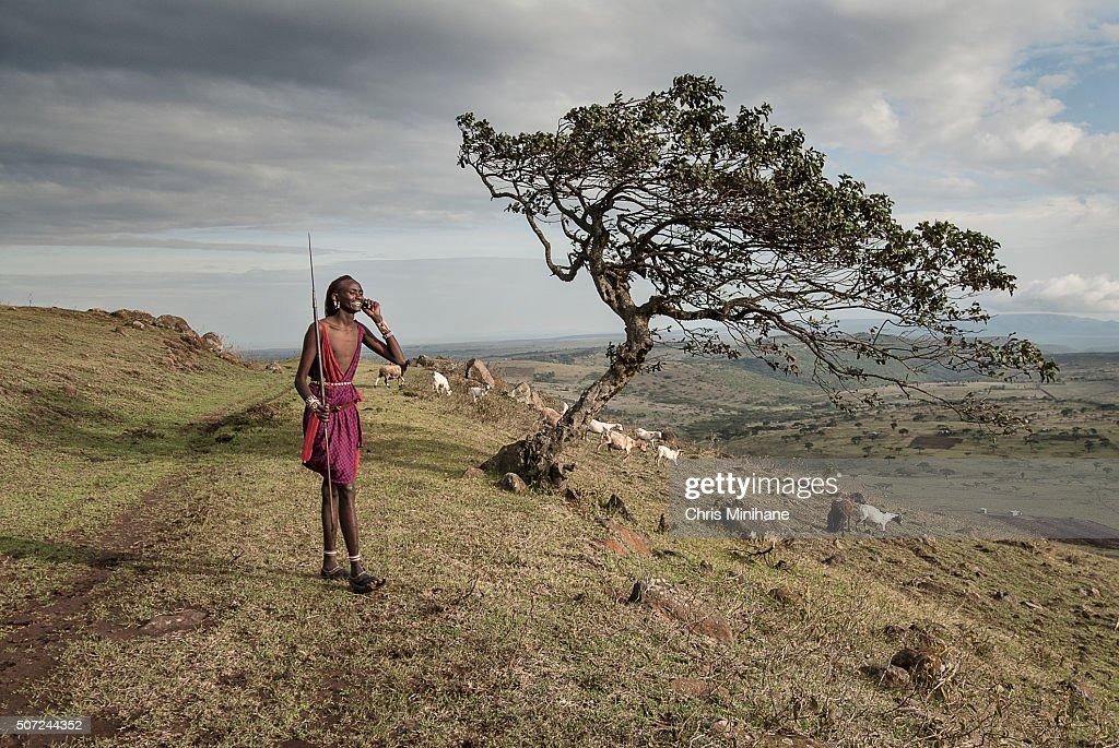 African Maasai man speaks on a cell phone. : Foto de stock