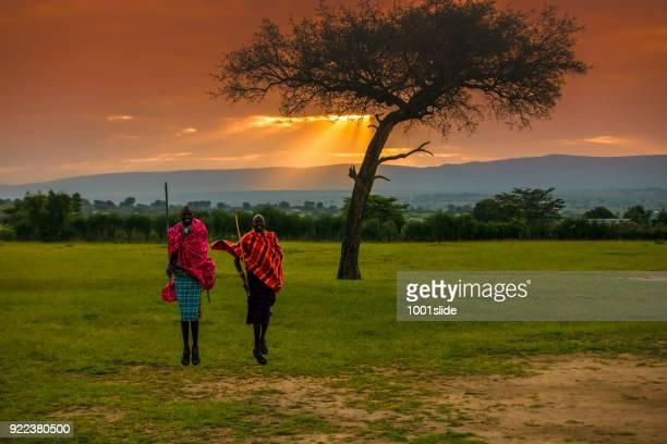 guerriers masaï africaines au lever du soleil - guerrier massai photos et images de collection