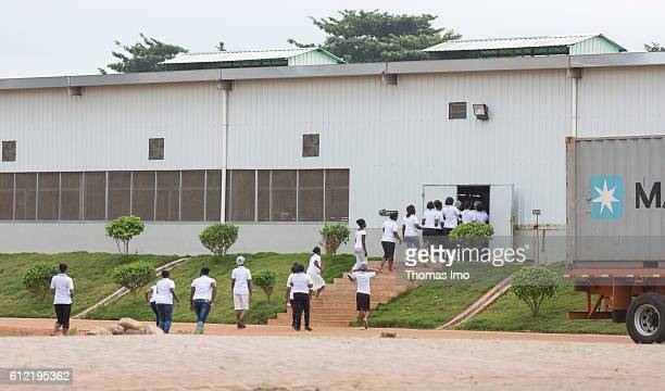 African men and women on their way to the MIM cashew processing company on September 07, 2016 in Mim, Ghana.