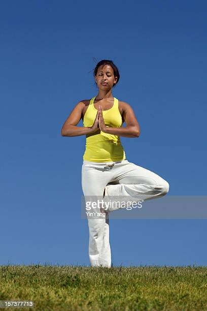 African Multi-Ethnic Ethnicity Woman in Yoga Tree Pose Exercising