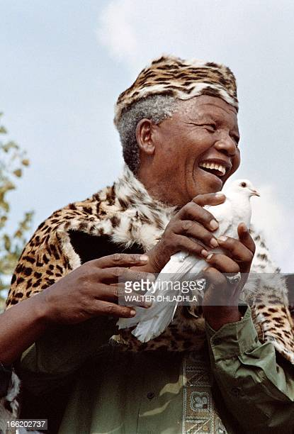 African National Congress President Nelson Mandela wearing leopard skin traditional clothes releases a white dove for peace at a rally to commemorate...