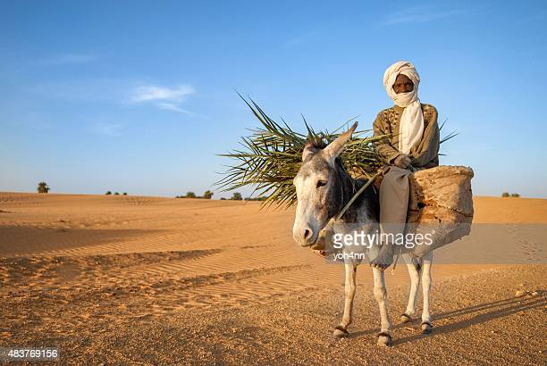 african nomad man - donkey stock pictures, royalty-free photos & images