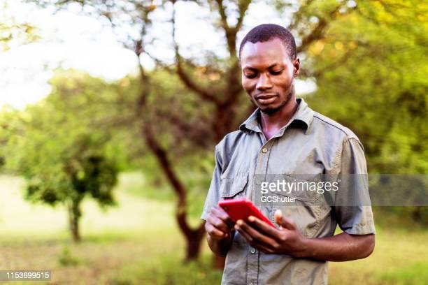 african park ranger kontrol lera väder rapporten med hjälp av smartphone - utvecklingsland bildbanksfoton och bilder