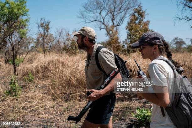 African Parks special projects manager Marketa Antononova and veterinarian Pete Morkel track a herd of elephants on foot during an elephant collaring...