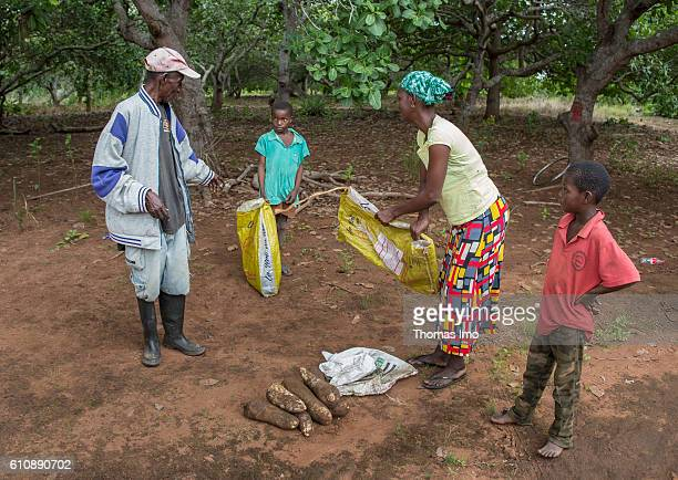 African peasant family with a small harvest on September 06 2016 in Congo Ghana