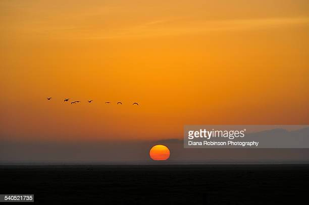 African Sunrise, Kenya, East Africa
