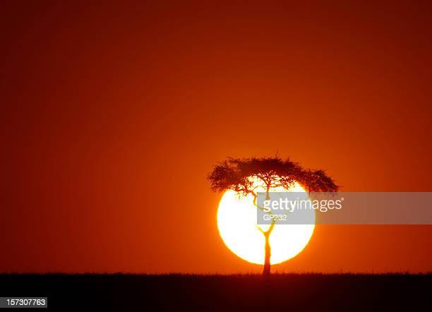 Africano sunrise