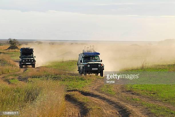 African wildlife safari in Serengeti National Park,Tanzania