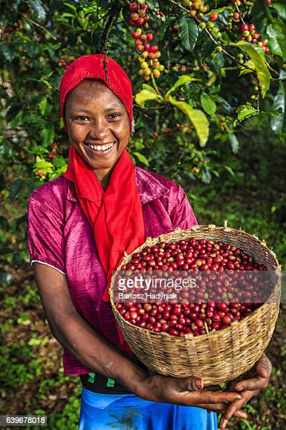 African woman holding basket full of coffee cherries, East Africa