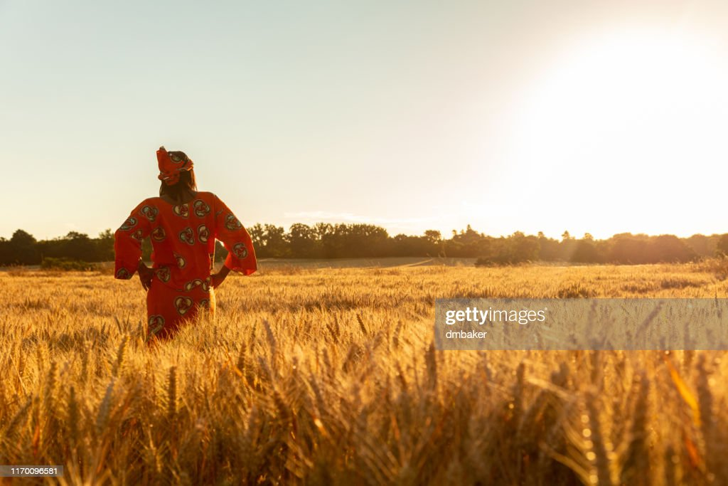 African woman in traditional clothes standing, looking, hand to eyes, in field of barley or wheat crops at sunset or sunrise : Stock Photo