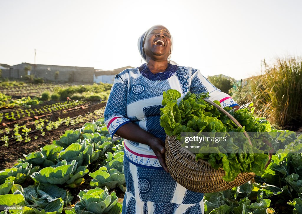 African woman laughing : Stock Photo