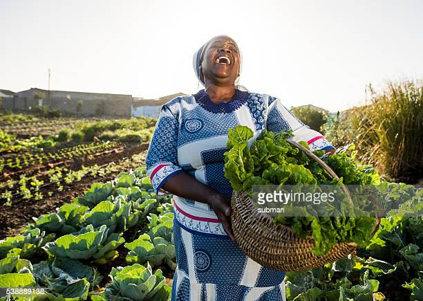 african woman laughing - afrika stockfoto's en -beelden