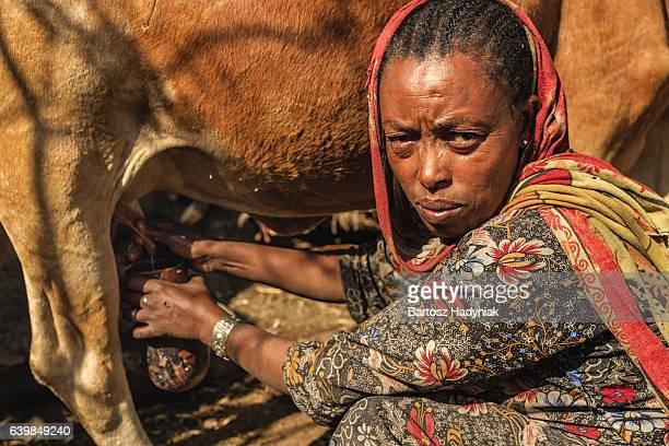 Femme d'Afrique de traite de vache, Éthiopie, Afrique