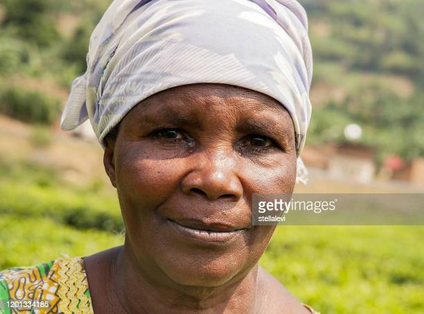 african woman worker portrait at the tea plantation. rwanda - stellalevi stock pictures, royalty-free photos & images