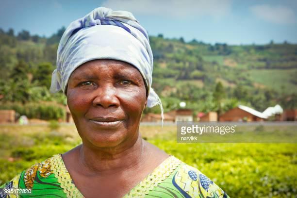 mujer africana que trabaja en la plantación de té - ruanda fotografías e imágenes de stock