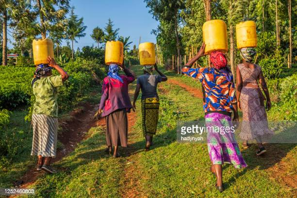 african women carrying water, kenya, east africa - africa stock pictures, royalty-free photos & images