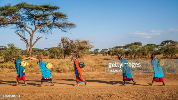 african women from maasai tribe carrying water, kenya, east africa - poor africans stock pictures, royalty-free photos & images