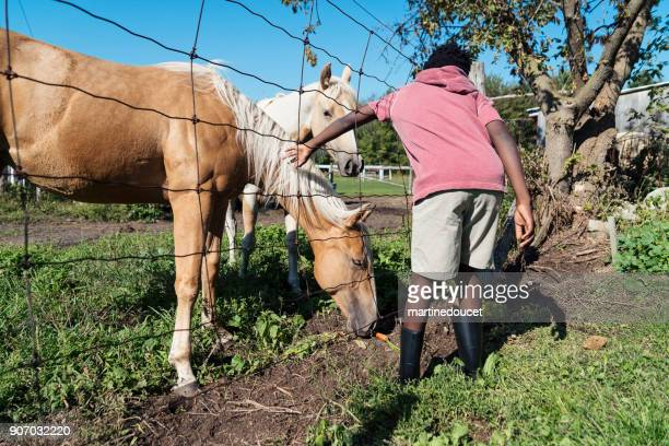 African-american boy stroking horses hair behind a fence.