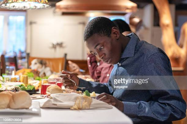 african-american during thanksgiving dinner - thanksgiving dog stock photos and pictures